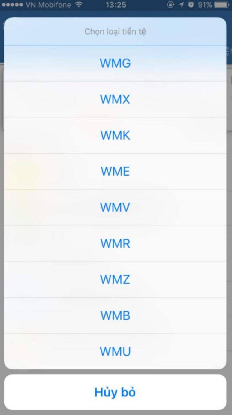 WebMoney có đa dạng phương thức nạp tiền để người dùng có thể lựa chọn
